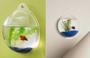 akrilovyj-nastennyj-akvarium