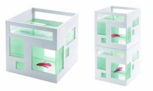 akvarium-fish-hotel
